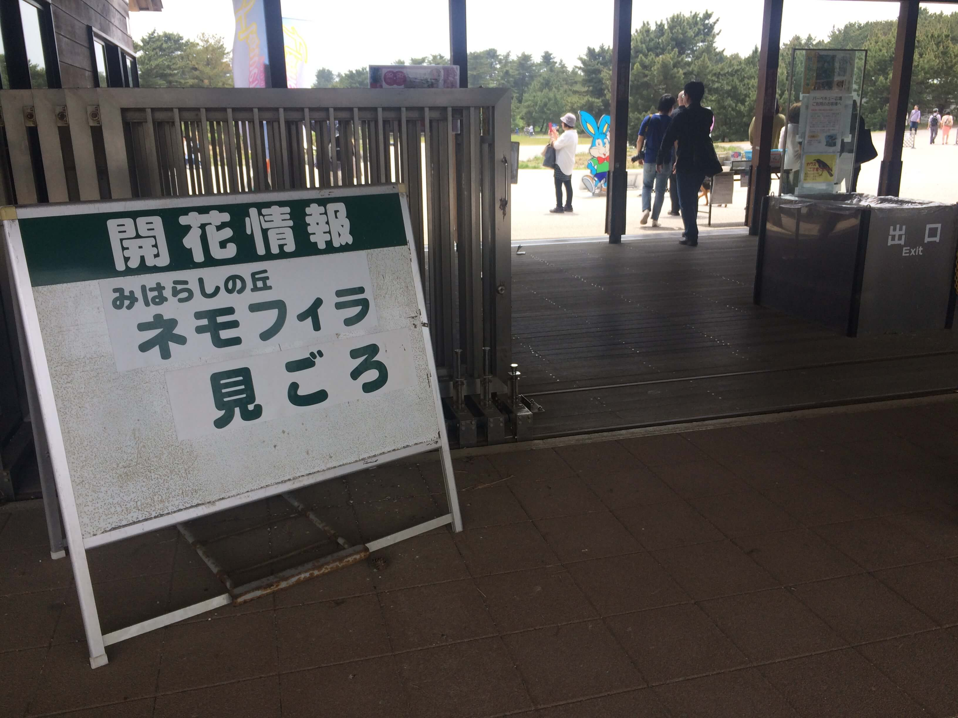ひたち海浜公園