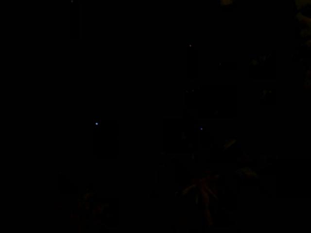モルディブの星空