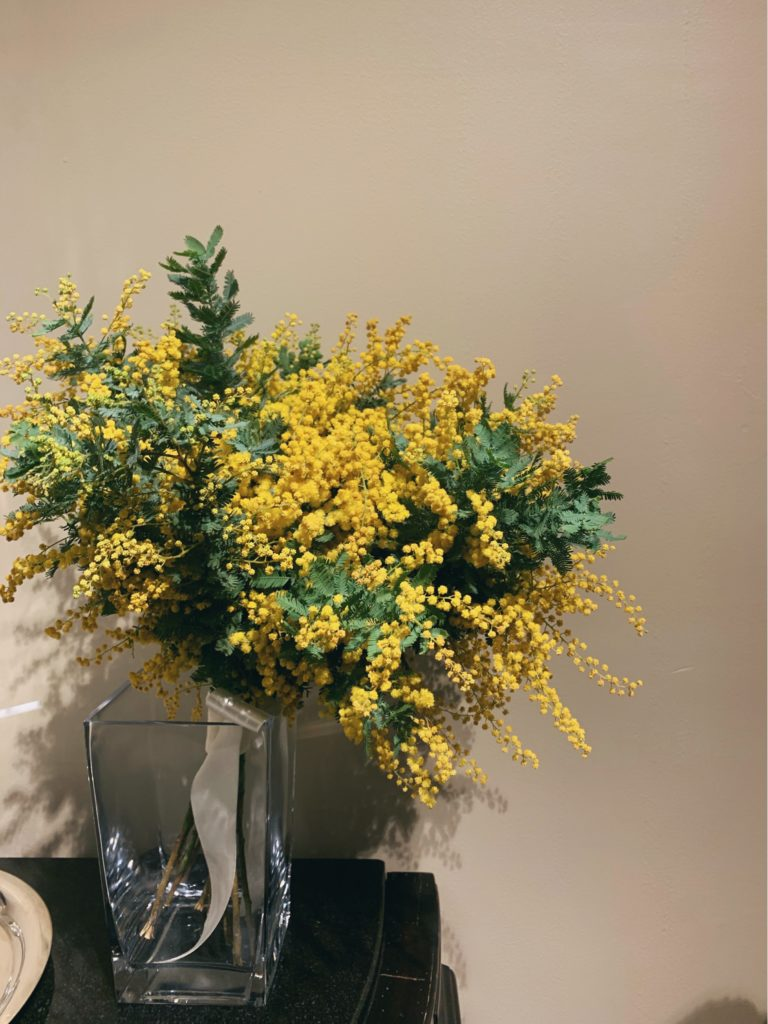 花瓶に飾られたミモザのフリー写真素材