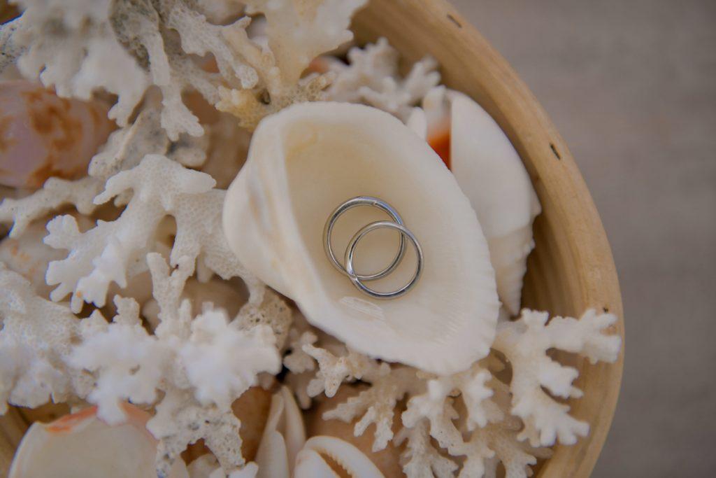 貝殻の中に入っている結婚指輪のフリー写真素材
